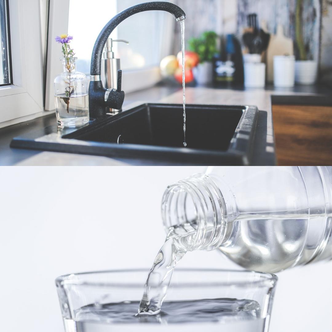 水道水とペット