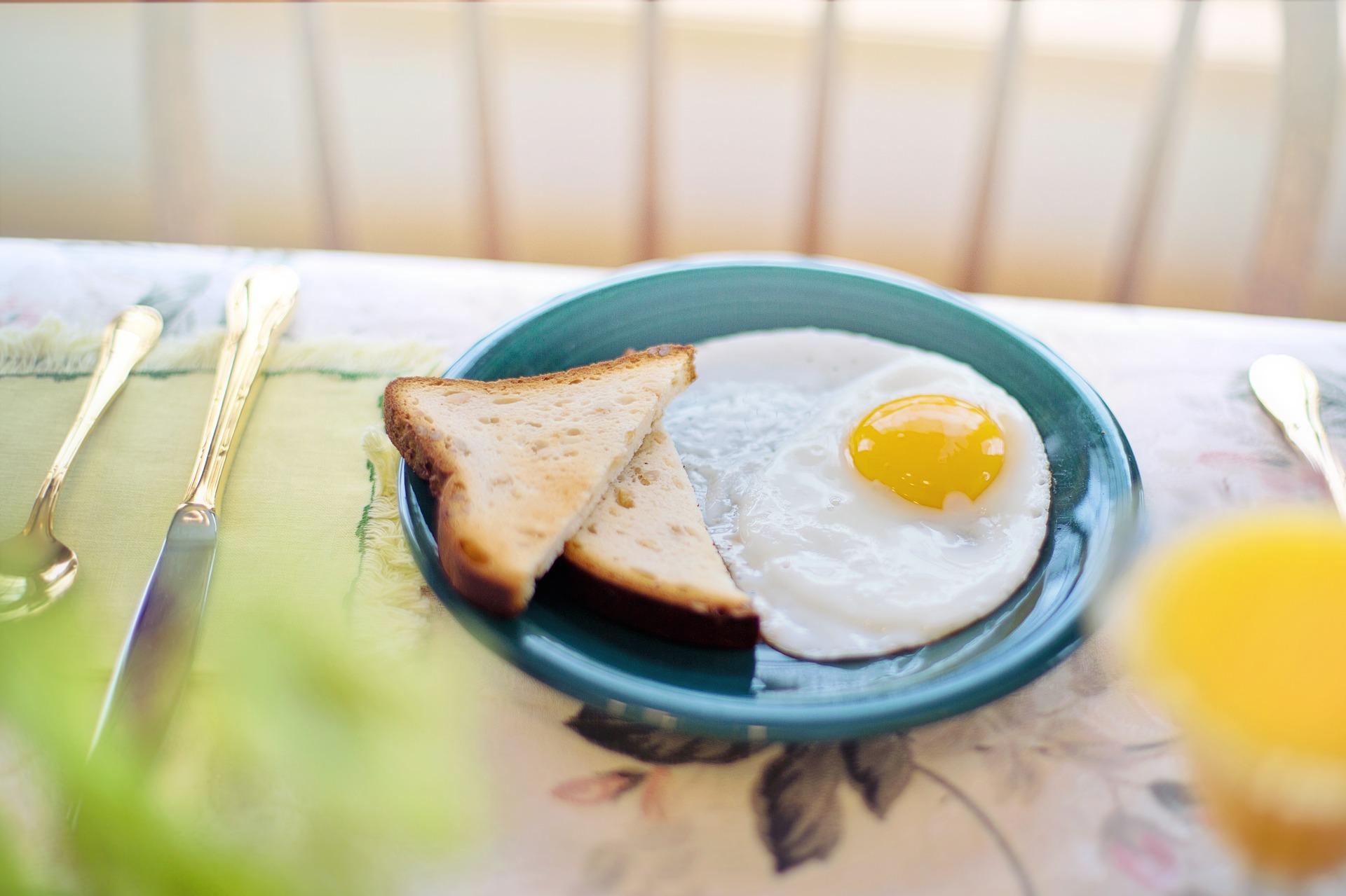 卵 完全栄養食材