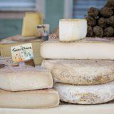 チーズのダイエット効果は凄い!「チーズ」の糖質と脂質は「太りにくい体」になれる!その種類と栄養とは??