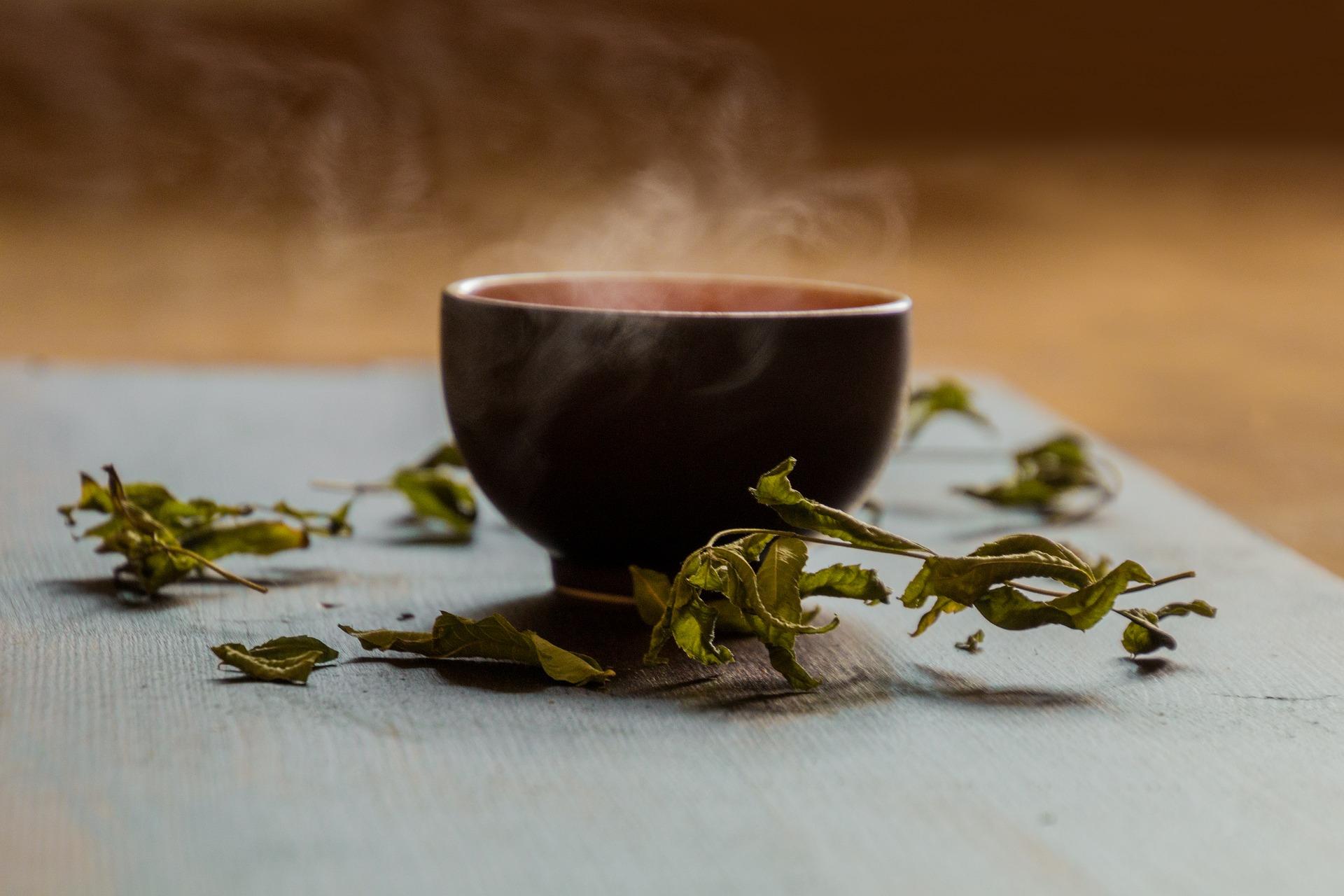 栄養成分 緑茶