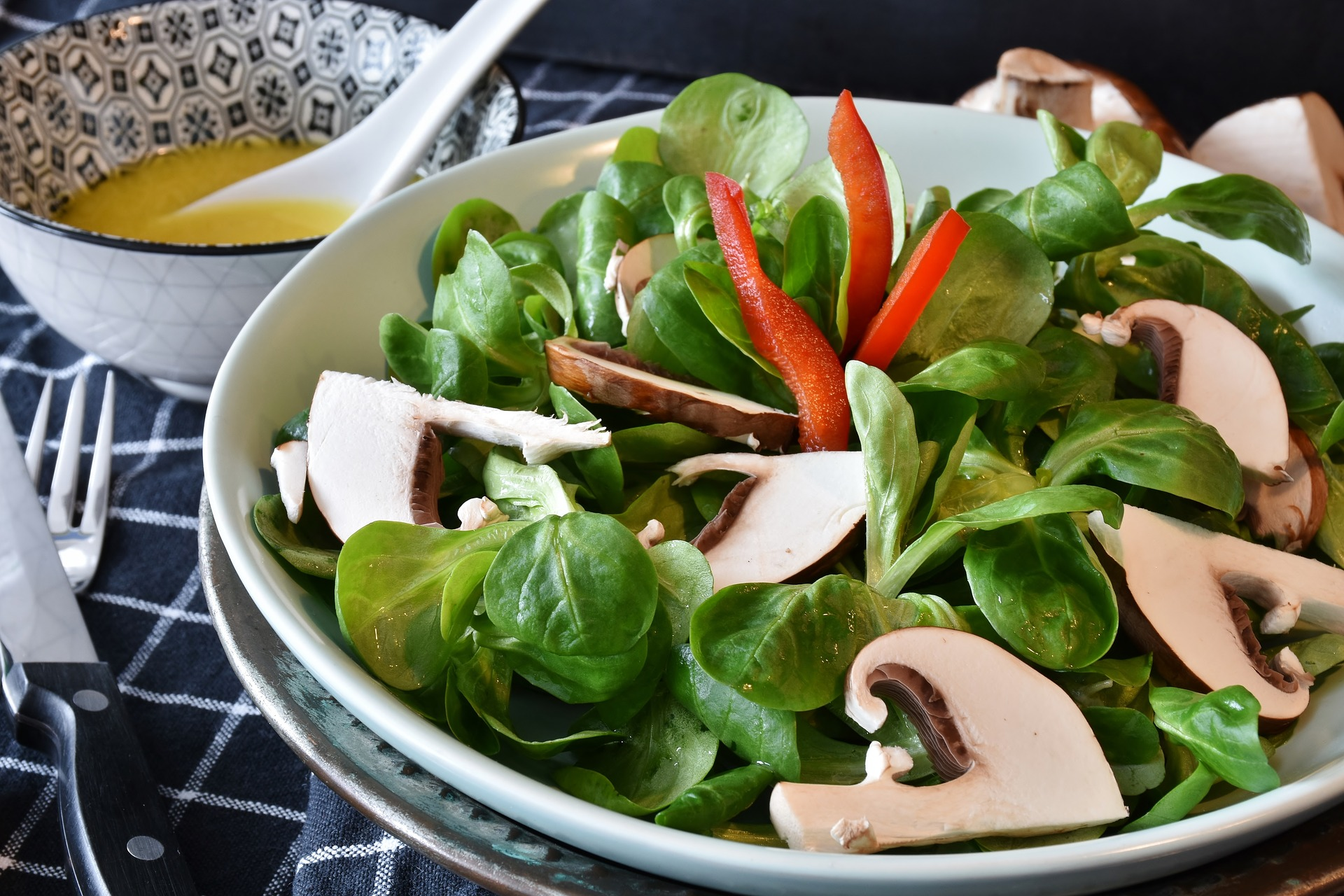 サラダ 食物繊維