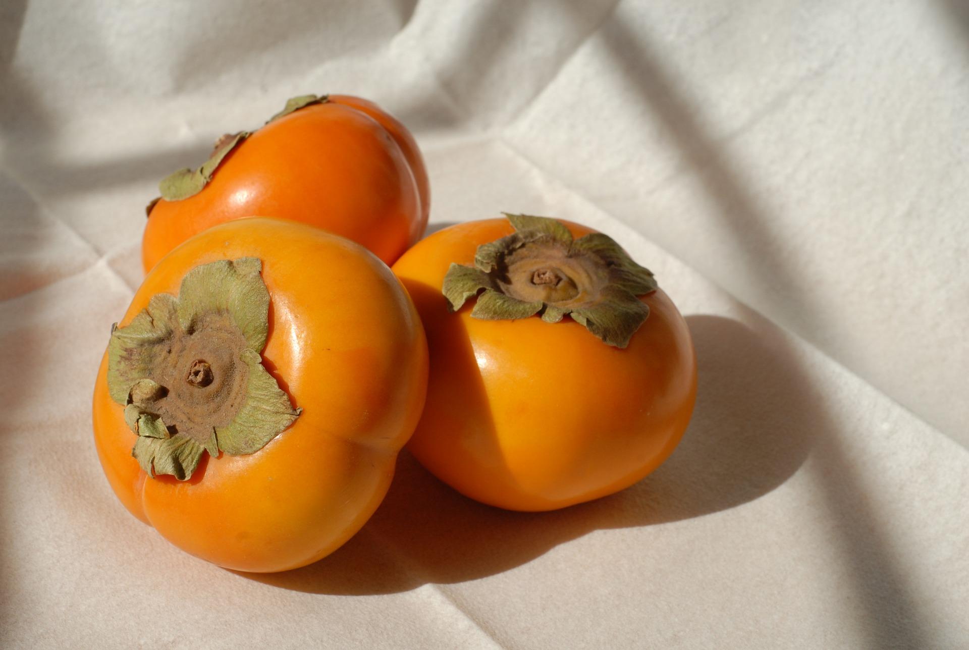 柿 タンニン 脂肪燃焼効果