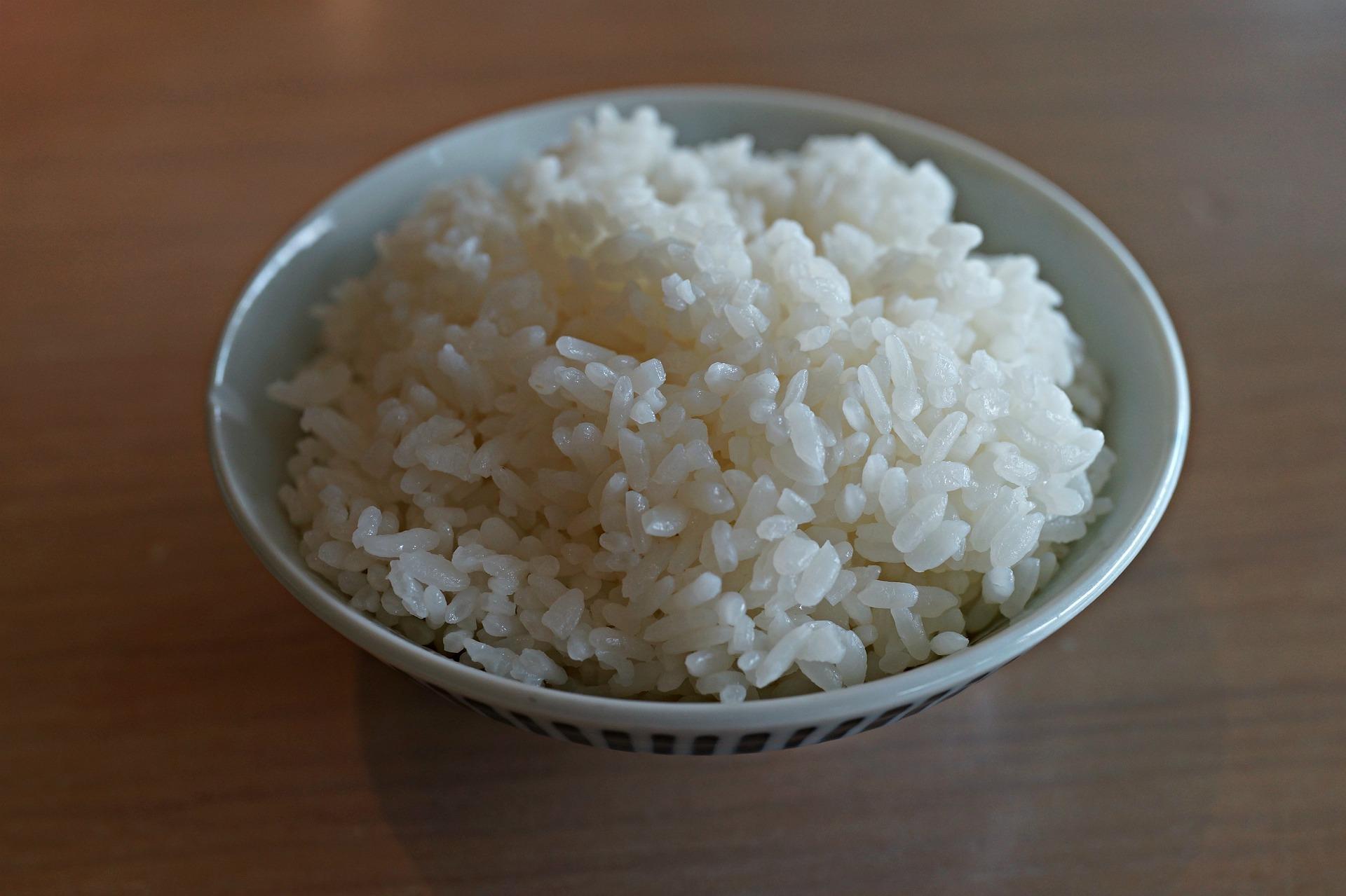 白米 糖質高い