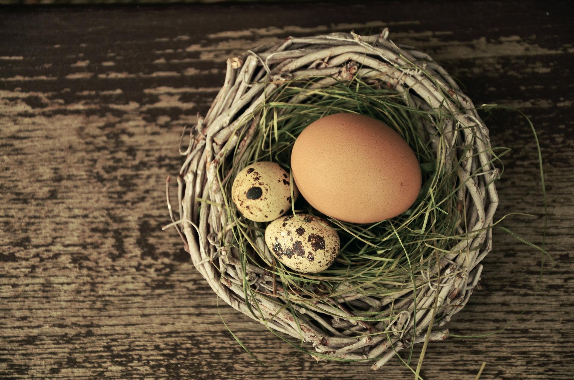 の 卵 カロリー うずら