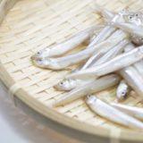 魚の中でも美容効果がトップクラス!と言われる「ワカサギ」の栄養効果とカロリーはどれくらい?