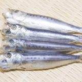 「めざし」はどんな魚?気になるカロリーや糖質と栄養効果とは?