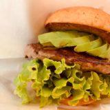 フレッシュネスバーガー「低糖質オフバンズ」のカロリーや糖質とダイエット中おすすめのバーガーを紹介